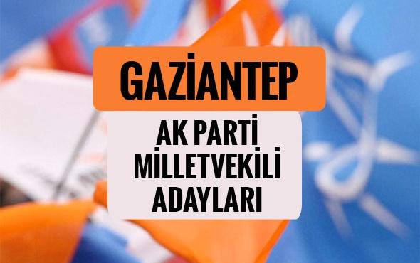 AK Parti   Milletvekili Adayları