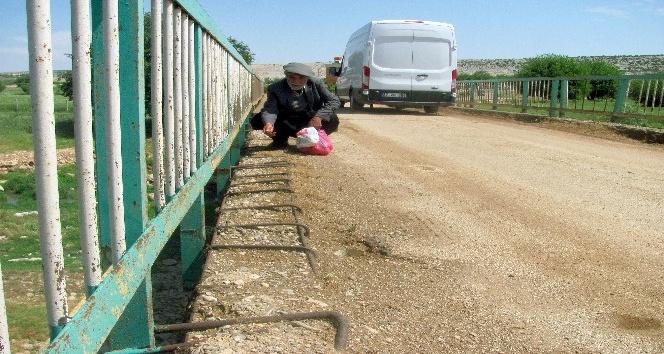 Vatandaşlardan çürük köprünün yenilenmesi talebi