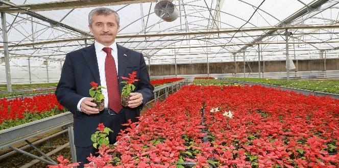 Şahinbey Belediyesi 606 parkı vatandaşın hizmetine sundu