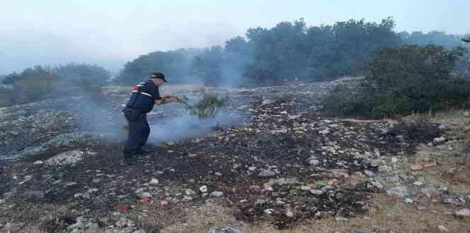 Gaziantep'de Korkutan Orman Yangını