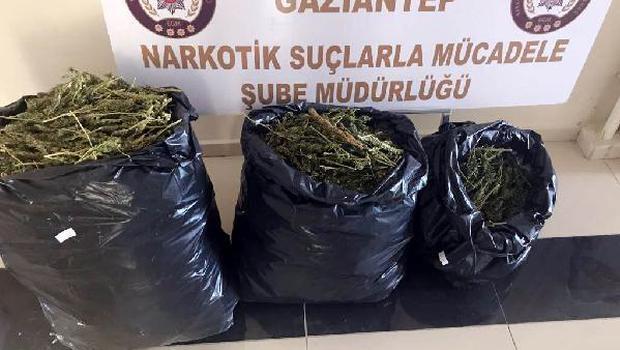 Gaziantep'te 20 Kilo Esrara 2 Gözaltı