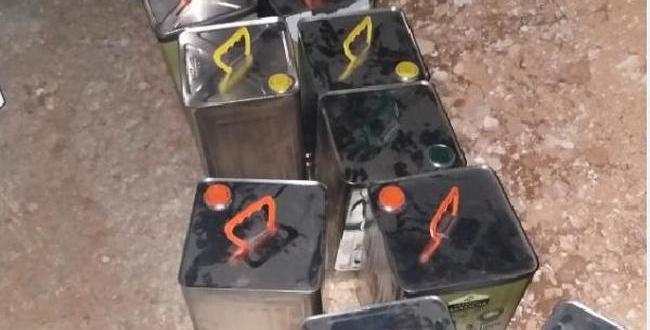 Gaziantep'te zeytinyağı hırsızlarına gözaltı