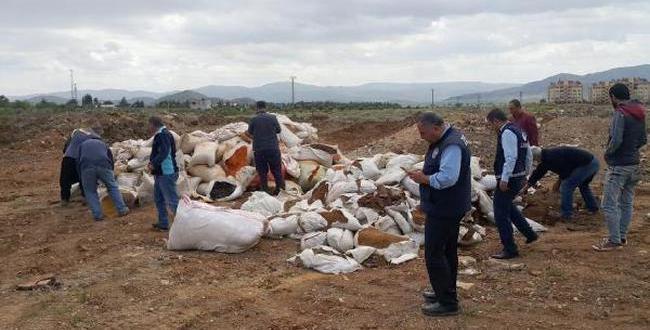Gaziantep'te 2,5 Ton Küflenmiş Biber İmha Edildi