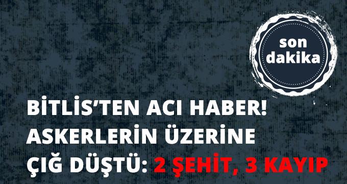 Bitlis'te Operasyondaki Askerlerin Üzerine Çığ Düştü: 2 Şehit, 3 Asker Kayıp