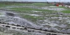 Çiftçiler yağışlardan memnun