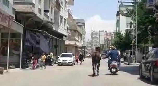 Yer: Gaziantep… İç Sızlatan Görüntü